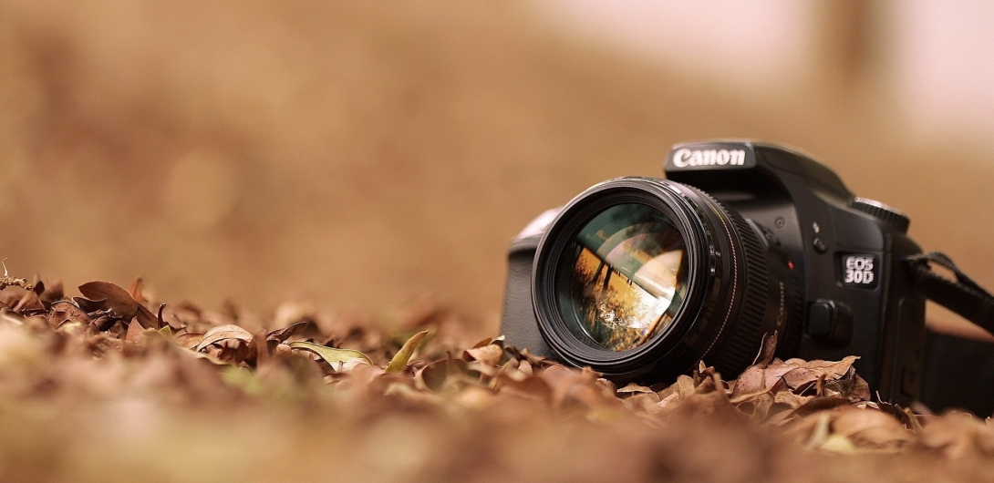 dobrego fotografa niełatwo znaleźć